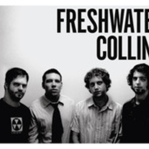Freshwater Collins