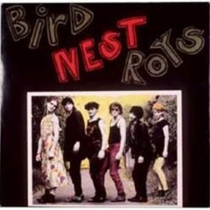 Bird Nest Roys