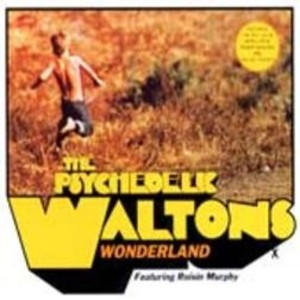 The Psychedelic Waltons