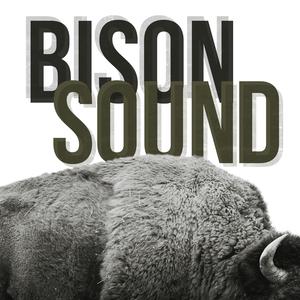 BisonSound
