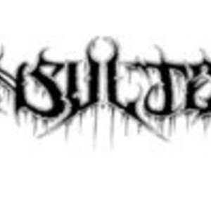 Insulter