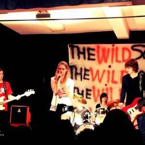 The wildsocks