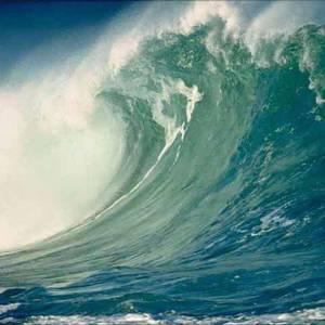 Bass Tsunami