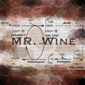 Mr.Wine