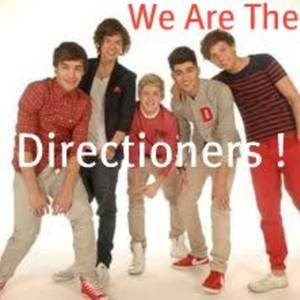 We Are The Directioners