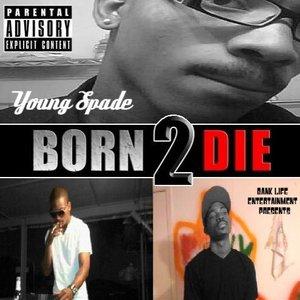Young Spade