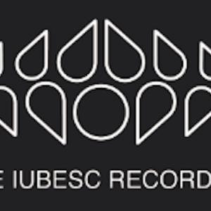Te Iubesc Records