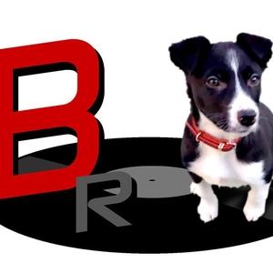 Buddy Records