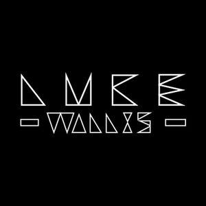 Luke Wallis