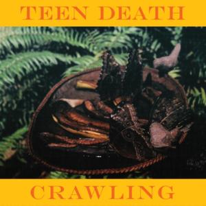 Teen Death