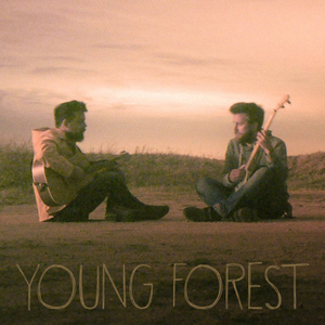 Young Forest