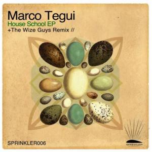 Marco Tegui