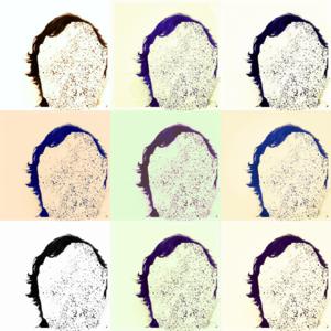 Static Masks