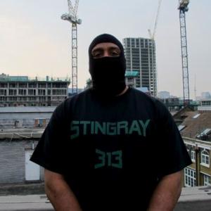 DJ Stingray 313