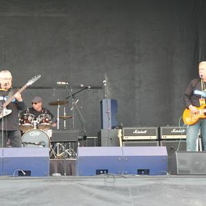 BlueZone Band
