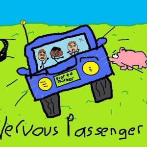 Nervous Passenger