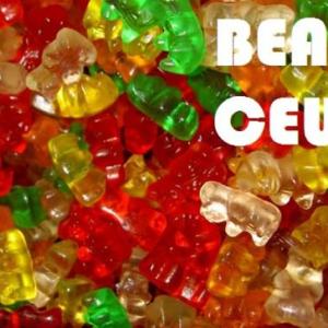 Bear Ceuse