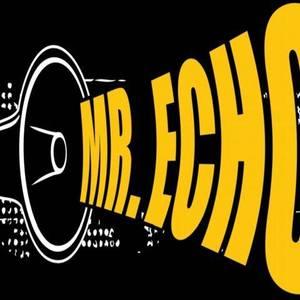 Mr Echo