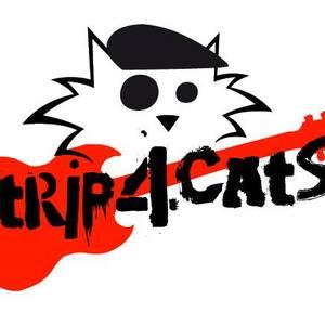 Trip 4 Cats