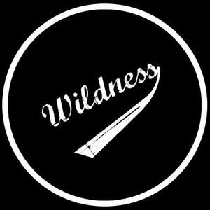 Wildness Pop-punk