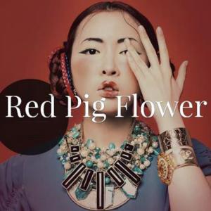 Red pig flower