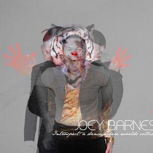 Joey Barnes