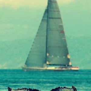 Of Whales and Sails