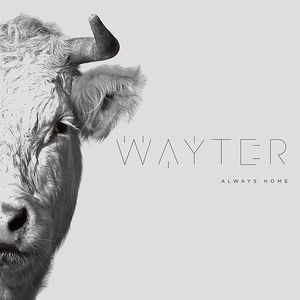 Wayter