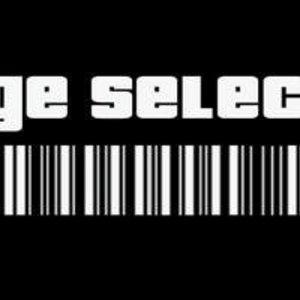 Voltage selector
