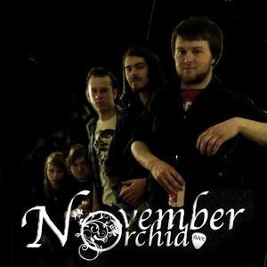 November Orchid