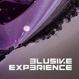 Elusive Experience