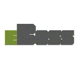 eBoss