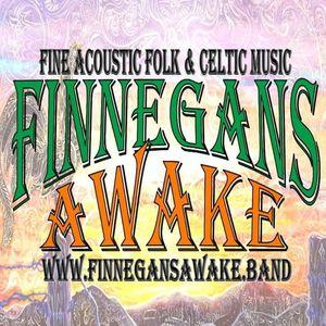Finnegans Awake