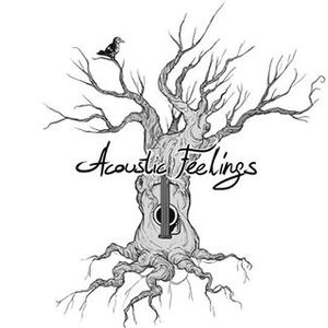 Acoustic Feelings