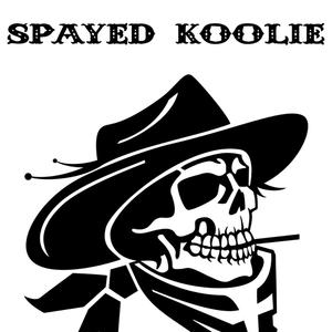 Spayed koolie