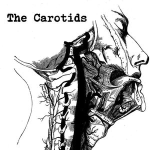 The Carotids