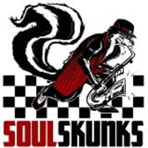 Soulskunks