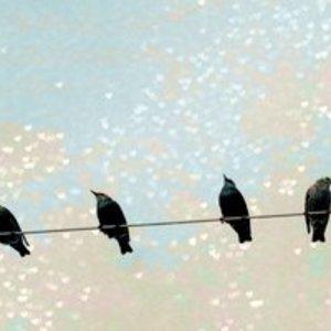 The Crow Hearts