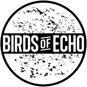 Birds Of Echo