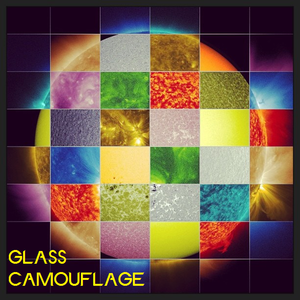 Glass Camouflage