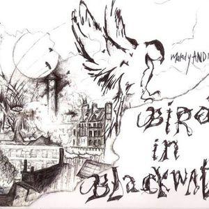Bird In Blackwater