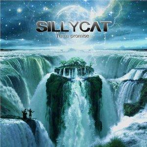 SillyCat