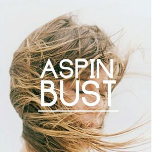 Aspin & Bust