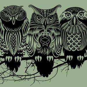 OWLS OF WALDEN