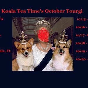 Koala Tea Time