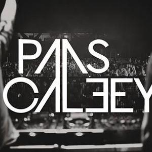 Paas Caleey
