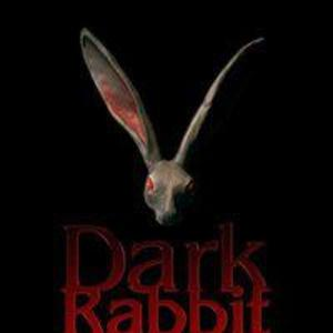 The Dark  Rabbit