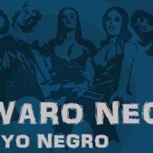 Alwaro Negro