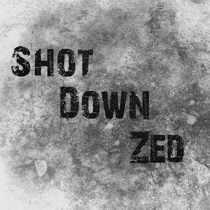 Shot Down Zed
