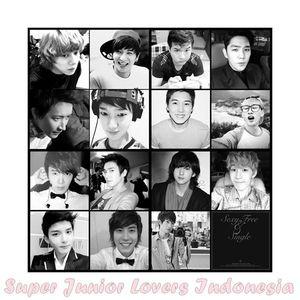 Super Junior Lovers Indonesia